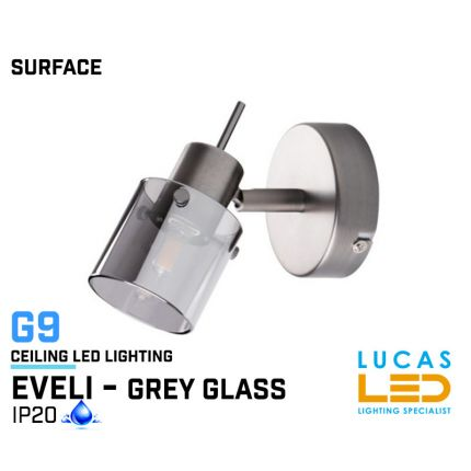 Wall fitting Lights - Surface - Modern &  Decorative Industrial Style Home Lamp EVELI - grey glass lampshades - G9 LED - IP20