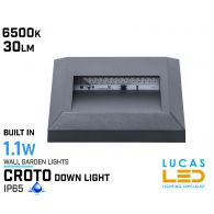 Outdoor LED Wall Light - 1.1W - IP65 - 6500K - 30lm - CROTO Square  - Surface Facade Lamp - Down Light - Graphite