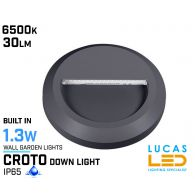 Outdoor LED Wall Light - 1.3W - IP65 - 6500K - 30lm - CROTO Round  - Surface Facade Lamp - Down Light - Graphite