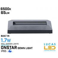 Outdoor LED Wall Light - 1.7W - IP65 - 6500K - 60lm - ONSTAR  - Surface Facade Lamp - Down Light - Graphite